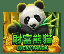 review-Lucky Panda